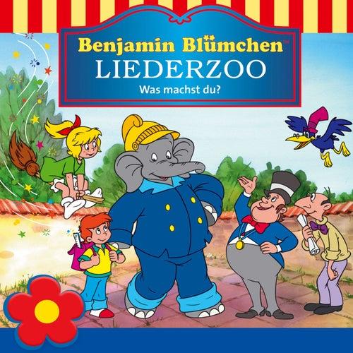 Benjamin Blümchen Liederzoo: Was machst du? von Benjamin Blümchen
