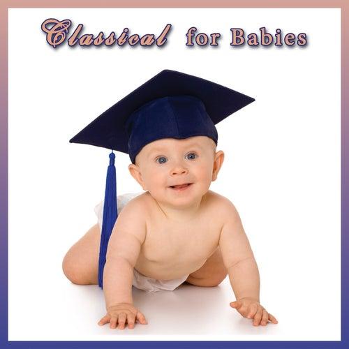 Classical For Babies de Various Artists