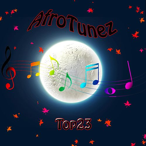 AfroTunez Top 23 van Various Artists