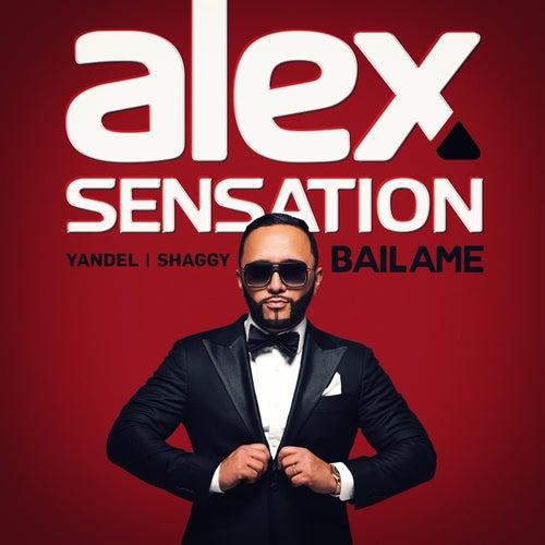 Bailame (feat. Yandel & Shaggy) de Alex Sensation