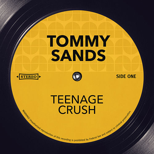Teenage Crush by Tommy Sands