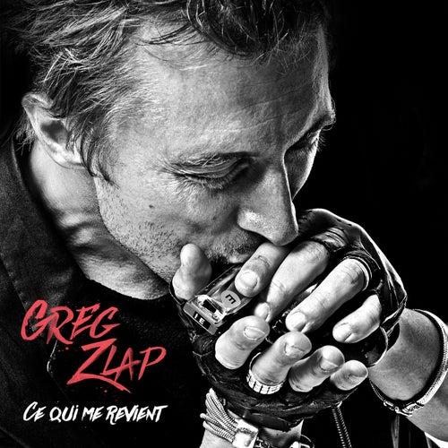 Ce qui me revient - Single de Greg Zlap