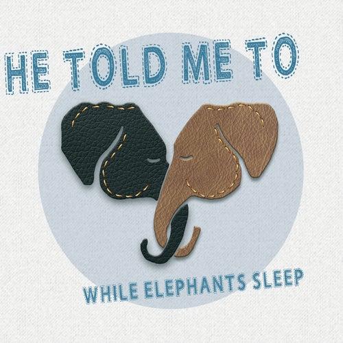 While Elephants Sleep von He Told Me To
