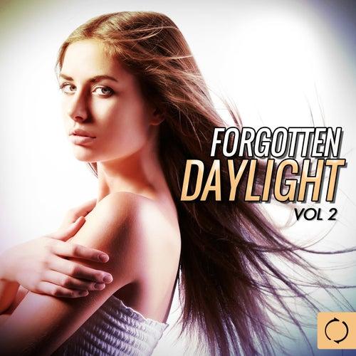 Forgotten Daylight, Vol. 2 de Various Artists