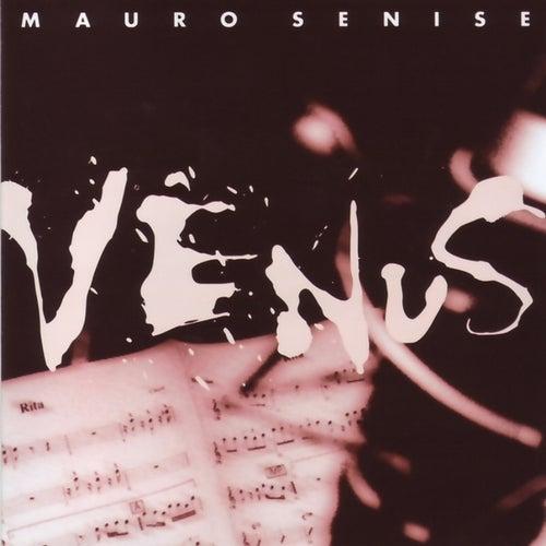 Vênus de Mauro Senise