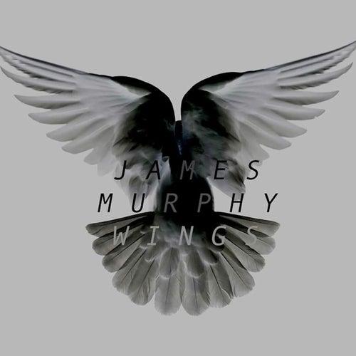 Wings by James Murphy