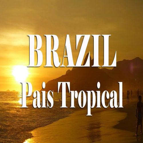 The Best Of Brasil Music (País Tropical) de Various Artists