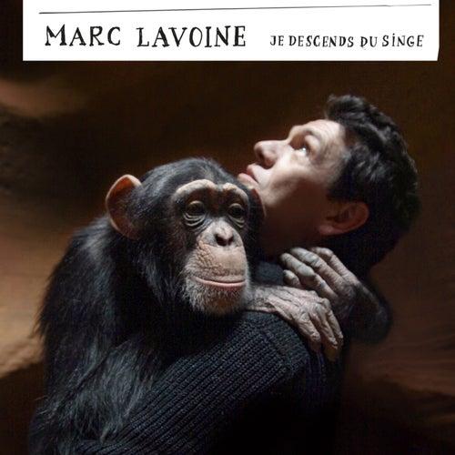 Je Descends Du Singe de Marc Lavoine