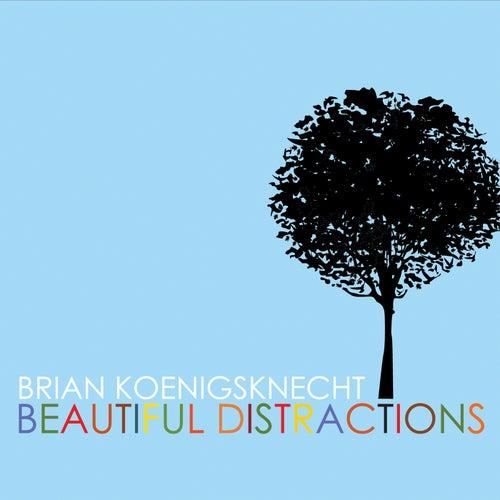Beautiful Distractions by Brian Koenigsknecht