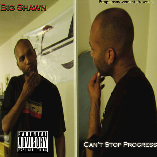 Can't Stop Progress von Various Artists