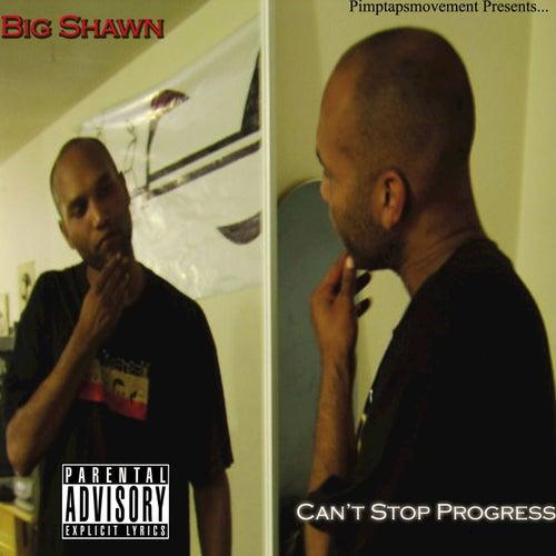 Can't Stop Progress de Various Artists