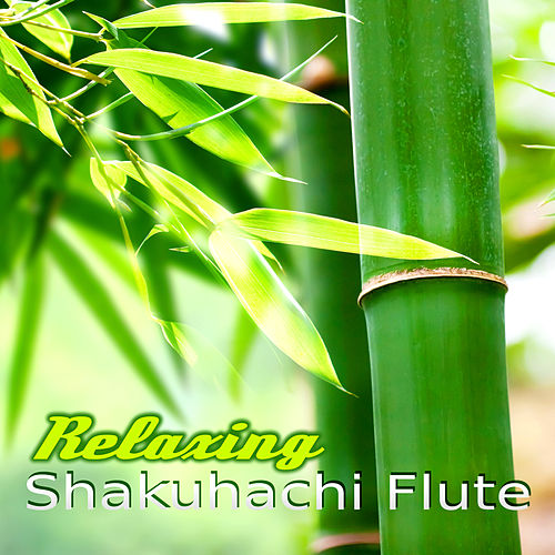 Relaxing Shakuhachi Flute – Oriental Japanese Music for Meditation, Zen Buddhist, Massage, Yoga, Reiki, Spa by Asian Flute Music Oasis