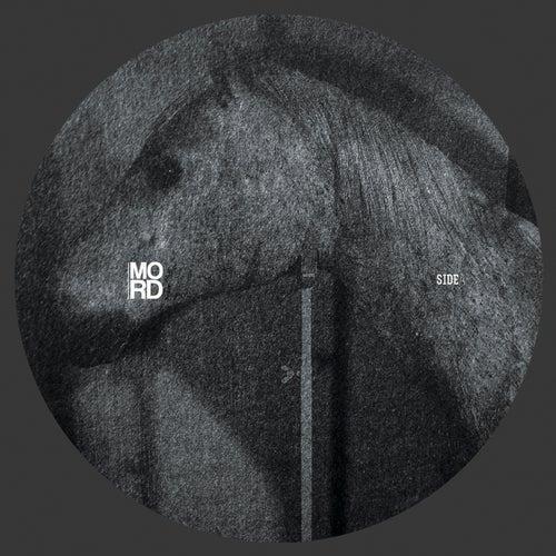 Inside Dimensions EP de Echologist
