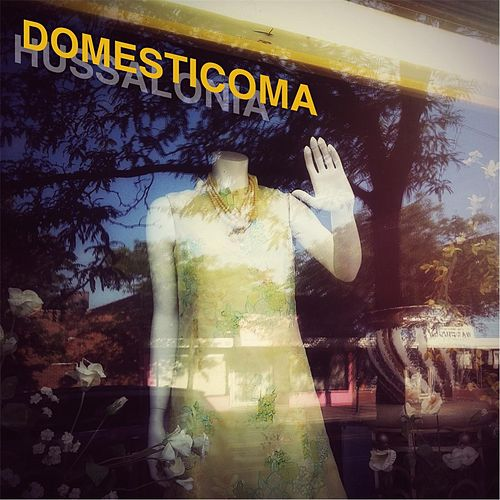 Domesticoma by Hussalonia