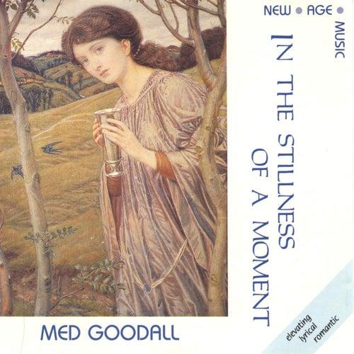 In the Stillness of a Moment de Medwyn Goodall