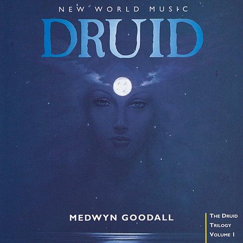 Druid de Medwyn Goodall
