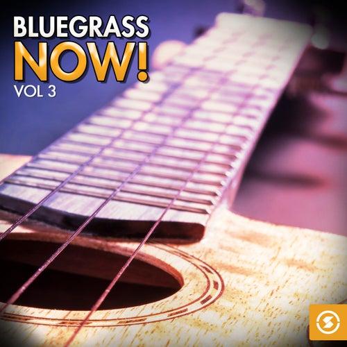 Bluegrass Now!, Vol. 3 de Various Artists