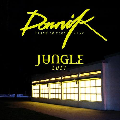Stand In Your Line (Jungle's Edit) de Dornik