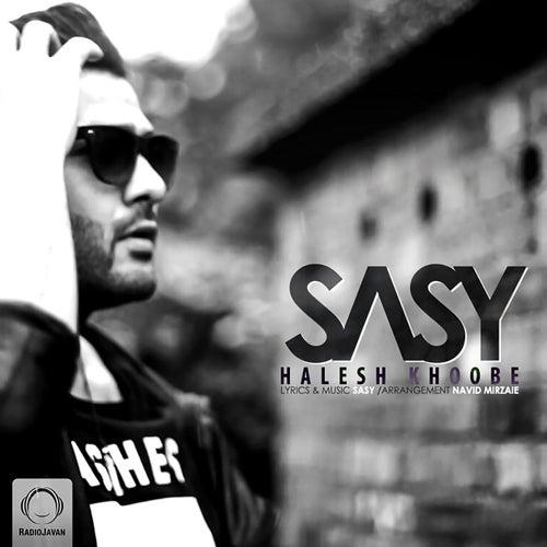Halesh Khoobe by Sasy