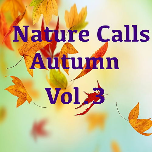 Nature Calls Autumn, Vol.3 von Various Artists