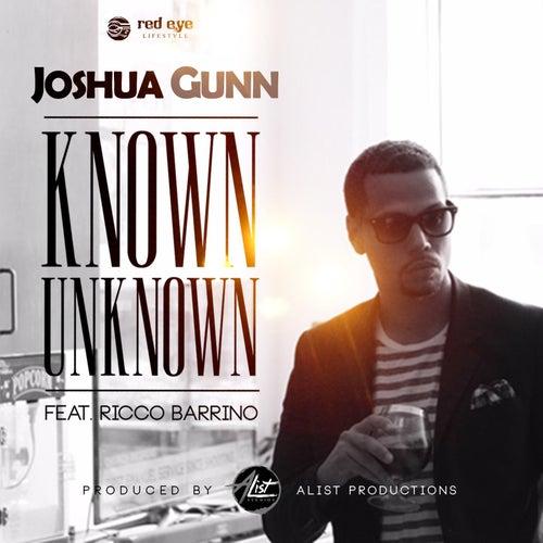 Known Unknown (feat. Ricco Barrino) von Joshua Gunn