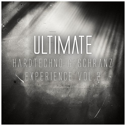 Ultimate Hardtechno & Schranz Experience, Vol. 2 de Various Artists