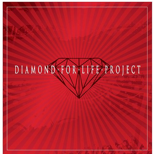 Daimond for Life Project by Black Mattic