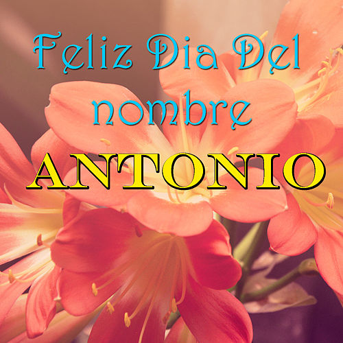 Feliz Dia Del nombre Antonio de Various Artists