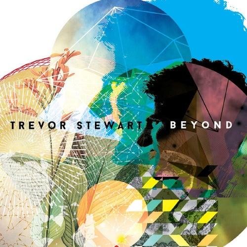 Beyond von Trevor Stewart