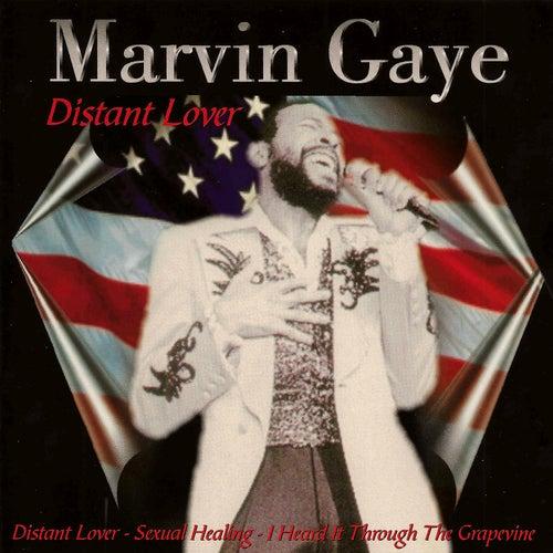 Distant Lover de Marvin Gaye