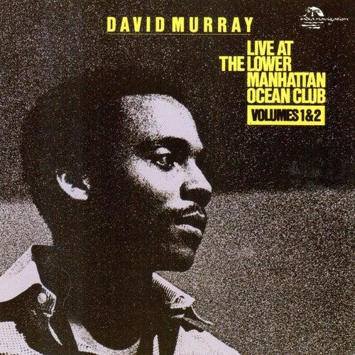 Live at the Lower Manhattan Ocean Club (Live) von David Murray