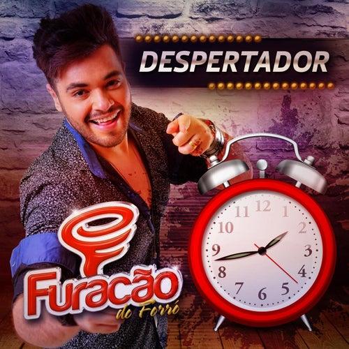 Despertador by Furacão do Forró