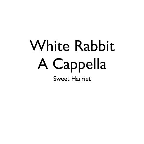 White Rabbit (A Cappella) by Sweet Harriet