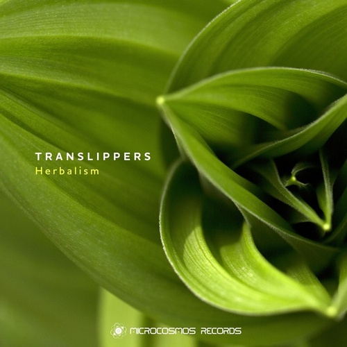Herbalism - EP by Translippers