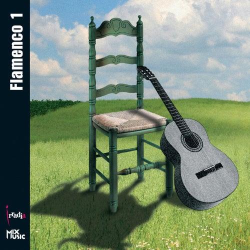 Flamenco 1 de Various Artists