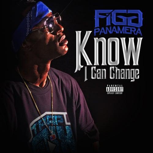Know I Can Change - Single von Figg Panamera