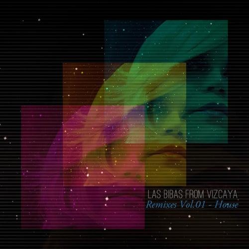 Remixes, Vol. 01 - House von Las Bibas From Vizcaya