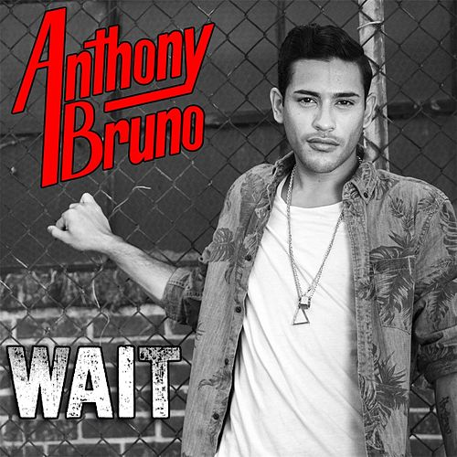 Wait von Anthony Bruno
