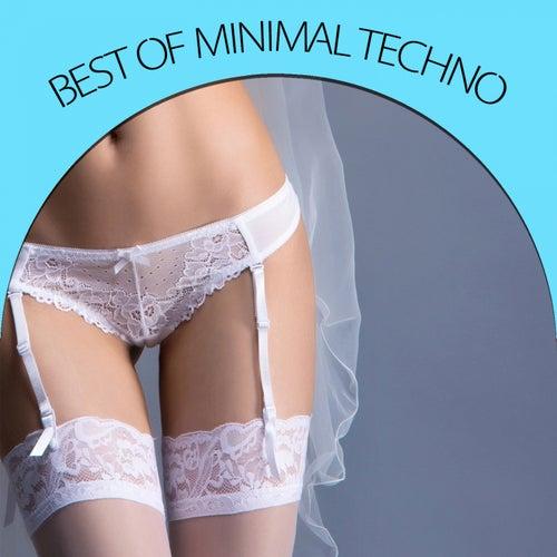 Best Of Minimal Techno von Various Artists