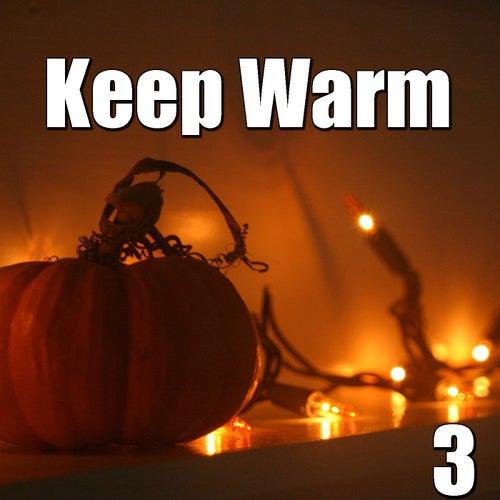 Keep Warm, Vol.3 de Various Artists