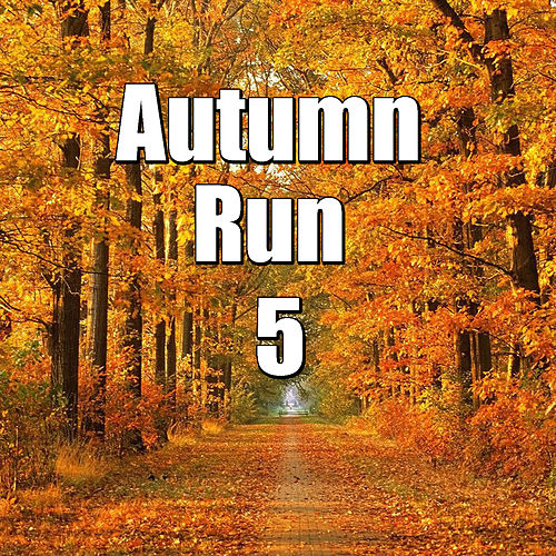 Autumn Run, Vol.5 von Various Artists