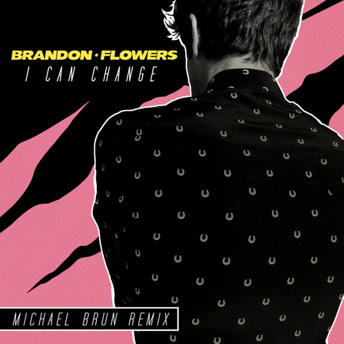 I Can Change (Michael Brun Remix) by Brandon Flowers