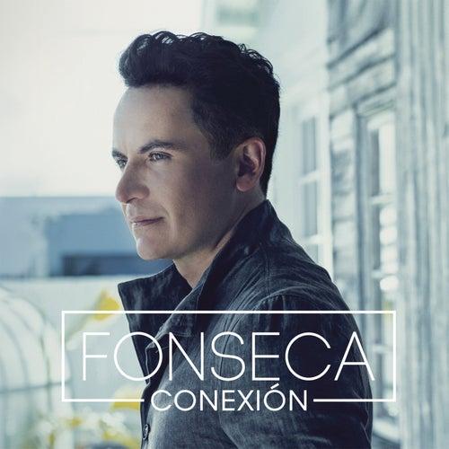 Conexión de Fonseca