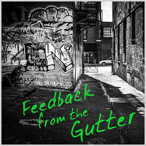 Feedback from the Gutter: A Collection of Live Punk & Other Junk de Various Artists