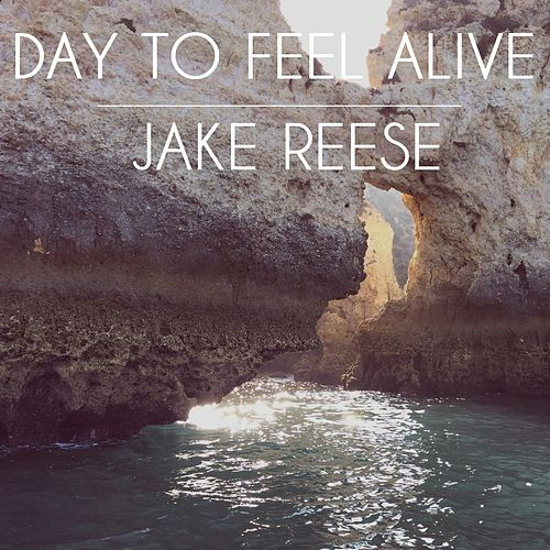 Day To Feel Alive by Jake Reese
