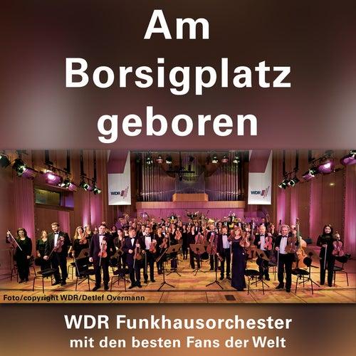 Am Borsigplatz geboren von Various Artists