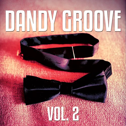 Dandy Groove, Vol. 2 (Cool & Relaxed Beats) by Various Artists