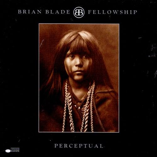 Fellowship Perceptual von Brian Blade