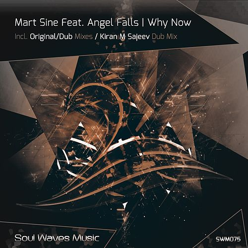 Why Now (feat. Angel Falls) van Mart Sine