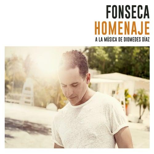 Homenaje (A la Música de Diomedes Díaz) von Fonseca